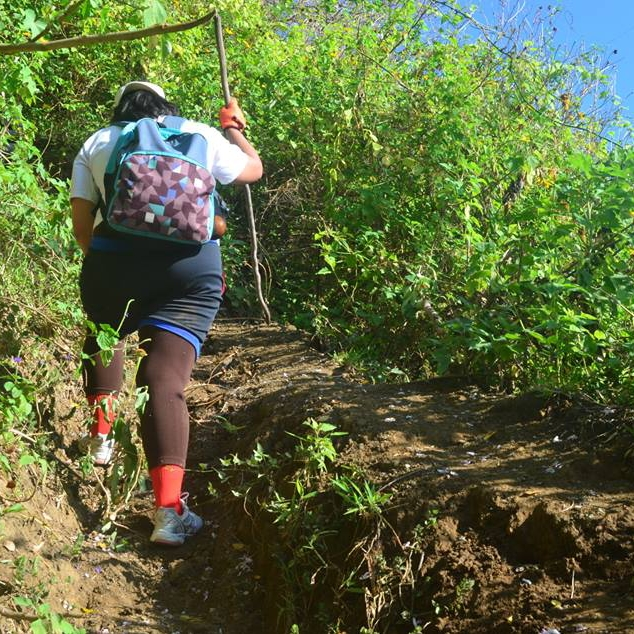 Going Up Napulak