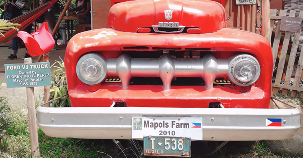 Share Iloilo: Mapols Farm
