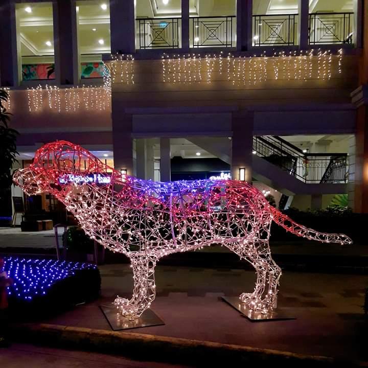 dog festive walk