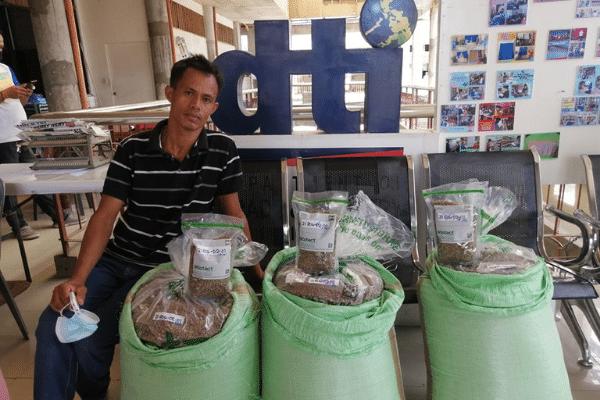 WVs Robusta Coffee Beans Graded Fine, Premium